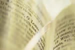 Bible (the) Focus (01) feature