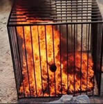 ISIS: Burnt Alive feature