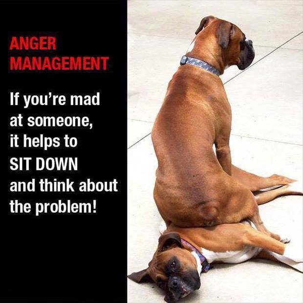 anger-management-01